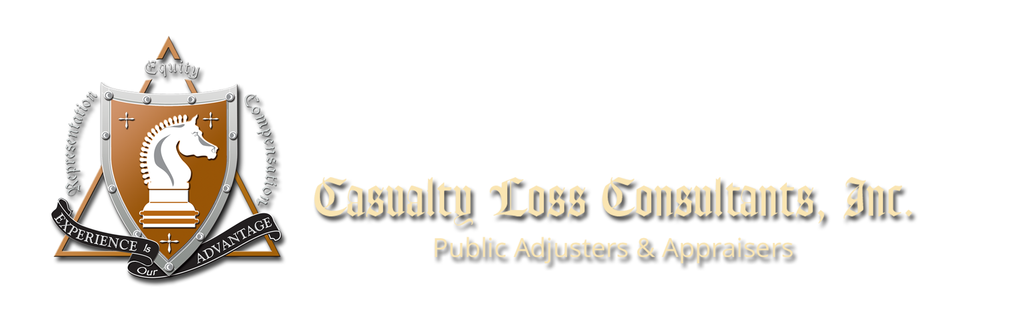 casualtylossconsultants.com